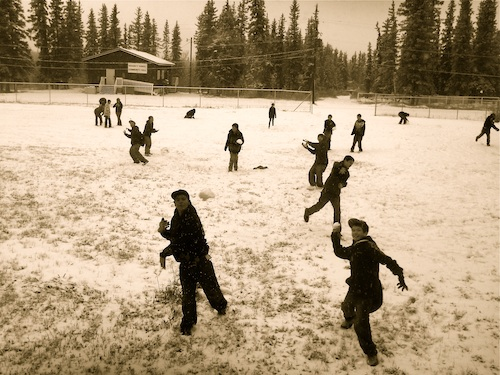 snowballs 1314