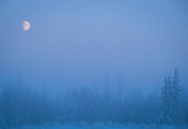 moon-0265