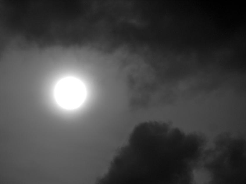 sun-4249