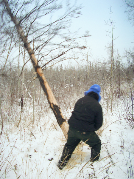 woodcutting-0744