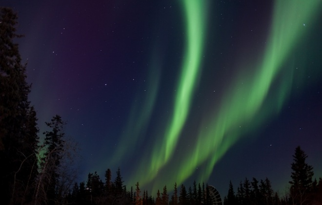 aurora-9577