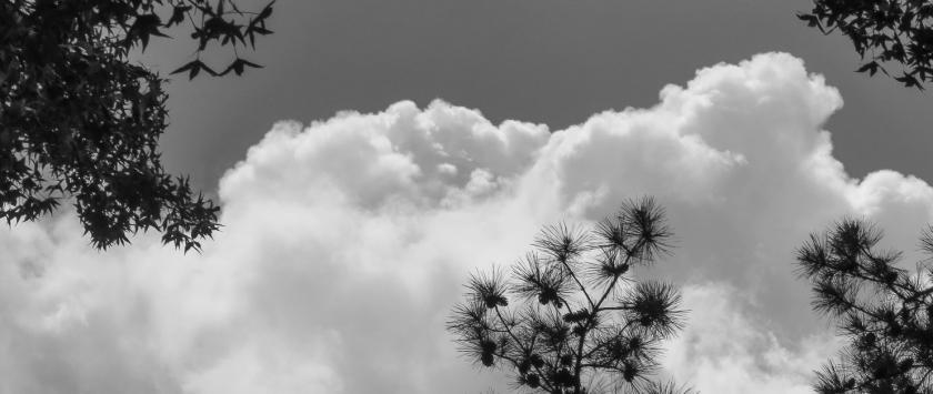 texas cloud-0004