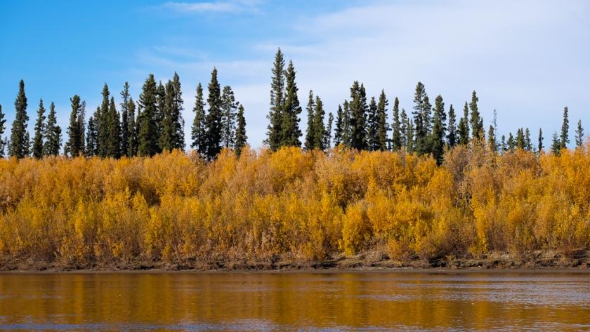 river-0901