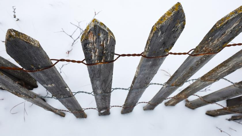 fences 2014-1124